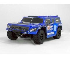 1/18th Scale 4WD Electric Power Off-Road PRO +++405TL+++